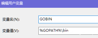 GOBIN配置.png